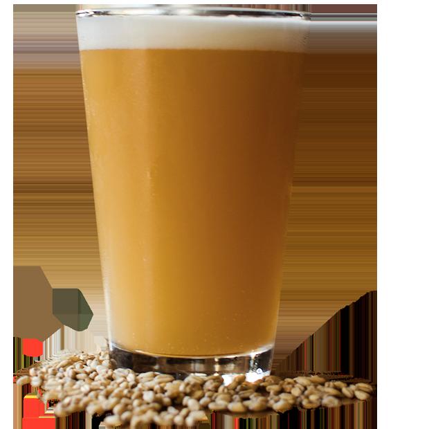 https://fenwickfarmsbrewingcompany.com/wp-content/uploads/2017/09/beer_glass_transparent_01copy.png