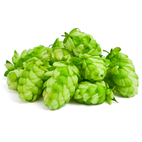 https://fenwickfarmsbrewingcompany.com/wp-content/uploads/2017/09/hops.png
